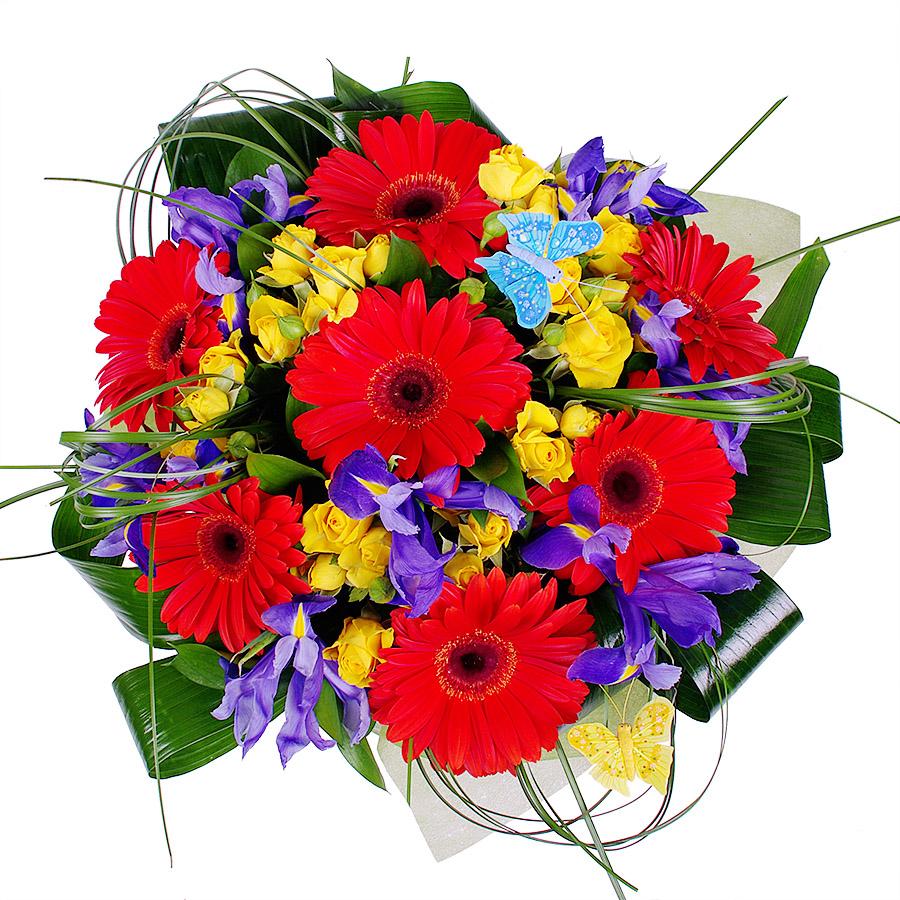 Цветы, букеты солнышко из гербер и ирисов